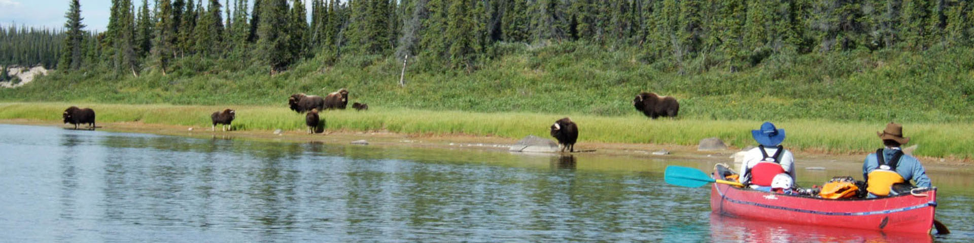 Coppermine River Canoe Trip by Black Feather - Image 110